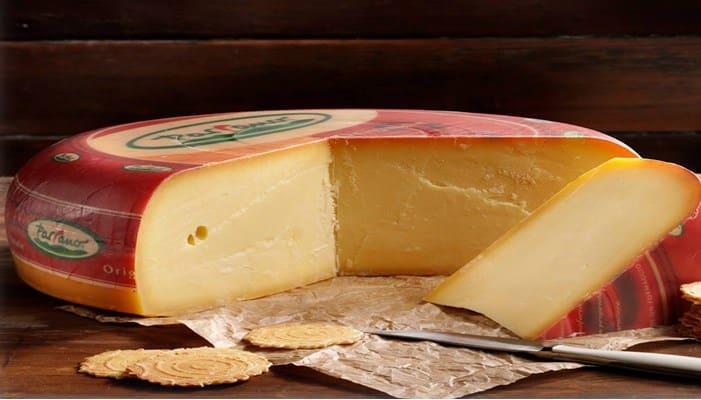 Edam embarazo queso en el