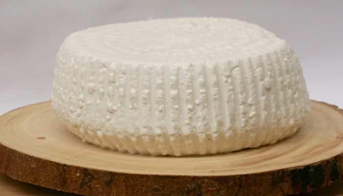 Características del queso Panela